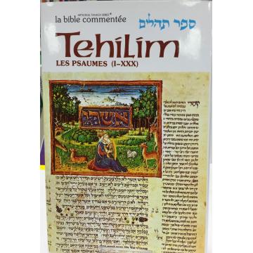 Tehilim T1 les psaumes de 1 à 30 Artscroll