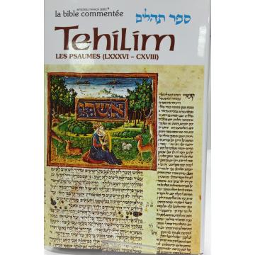 Tehilim T4 les psaumes de 86 à 118 Artscroll
